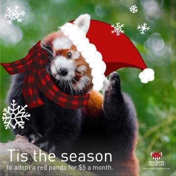 holiday-panda-insta