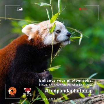 photoadventure2_insta