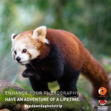 photoadventure_insta